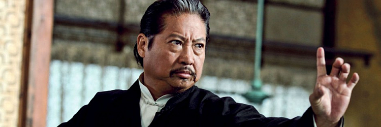 """The Wizard Hunter: The Hunt for Evangelion Crowley"" - Sammo Hung"
